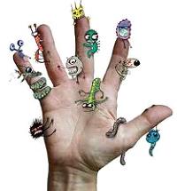 вид паразитов живущих организме человека