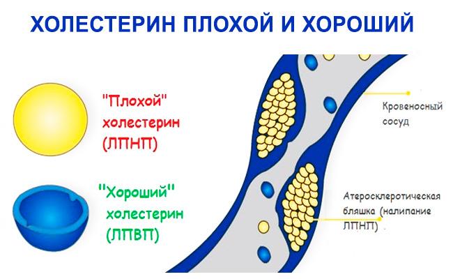 Прогестерон и эстрадиол после переноса эмбрионов